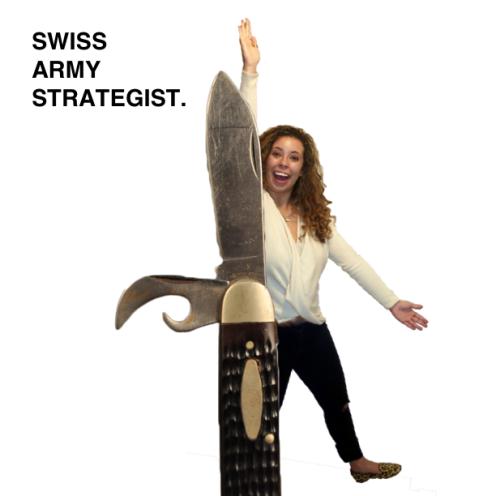 Swiss Army Strategist